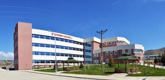 Hastane özel güvenlik